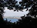 社務所の窓からの景色_20171003